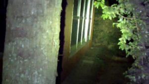 地蔵ヶ原でデンジャーの暗闇定点ミッション中断後周囲確認