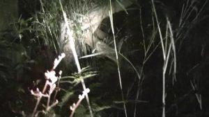 笠間城址にある、貞子のモデルになった井戸の屋根
