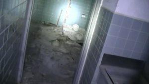 横向きロッジ1階トイレ2