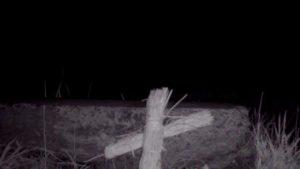 御霊櫃峠で行った隊長の定点映像