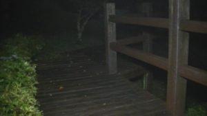 鹿児島県出水市の東光山公園の木でできた遊歩道の様子