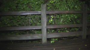 鹿児島県出水市の東光山公園の木でできた遊歩道