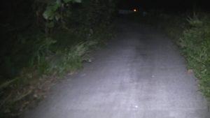 熊本県玉名市の石塘橋から展望公園へと続く道