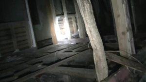小川脳病院の朽ち果てた木造部分と地面から生えてきた木