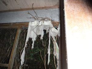小川脳病院の奥まった部屋に残っているカーテンの残骸