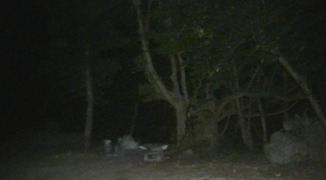 誰も近寄らなくなった台湾の公園廃墟、危険覚悟で突撃してみた