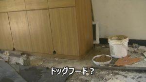 台湾にある造船所廃墟で見つけたドッグフード
